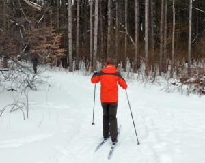 x country skiing
